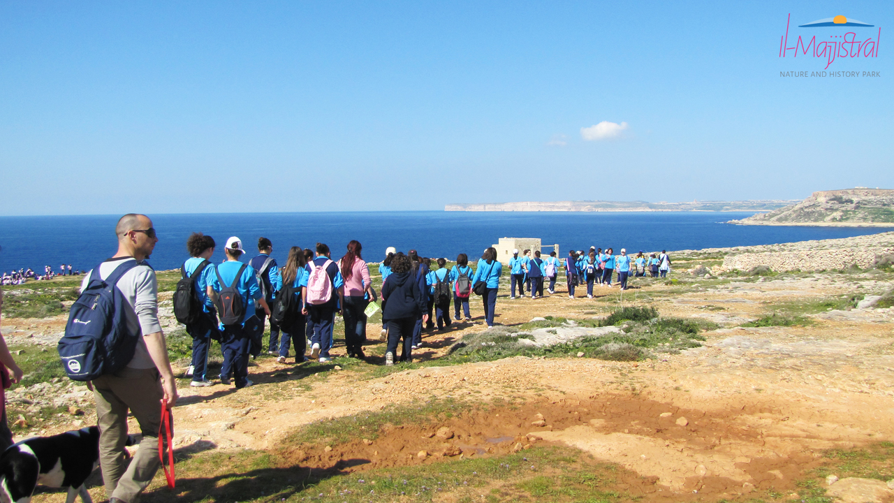 Educational guided walk tour