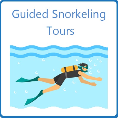 Guided Snorkeling Tours