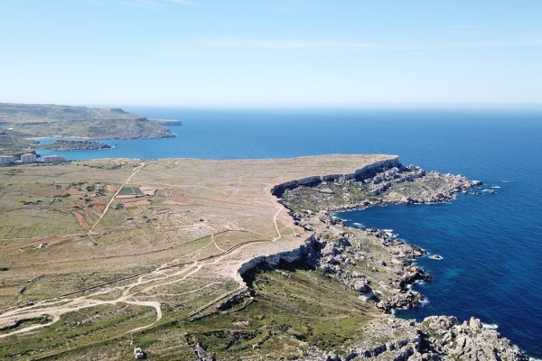 Over 200 tons of invasive alien species removed from Majjistral Park