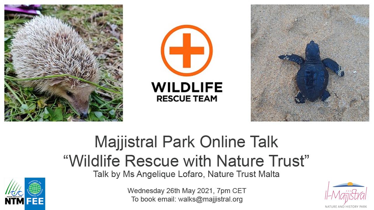 Wildlife Rescue with Nature Trust