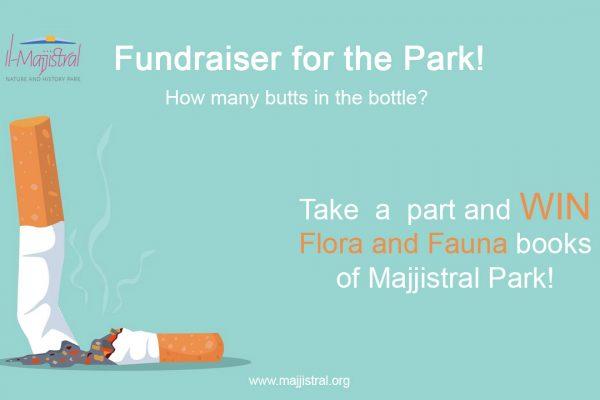 Fundraiser for the Park - June