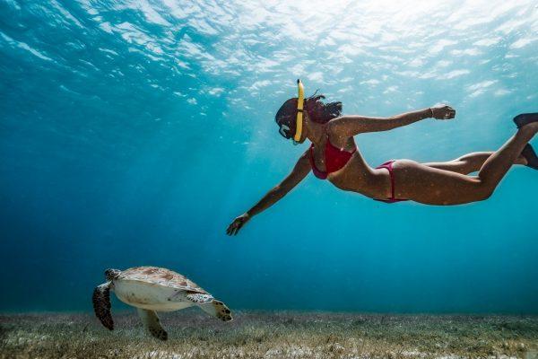 Snorkeling at Golden Bay
